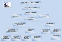 organogramma-en